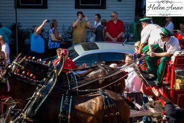 Clydesdales Doylestown 2016-9883-22