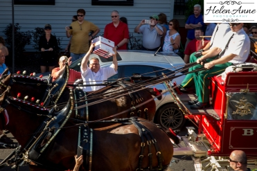 Clydesdales Doylestown 2016-9889-24