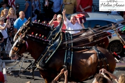 Clydesdales Doylestown 2016-9894-26