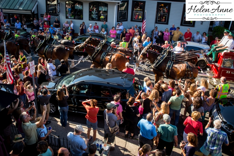 Clydesdales Doylestown 2016-9896-27