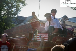 Clydesdales Doylestown 2016-9934-35