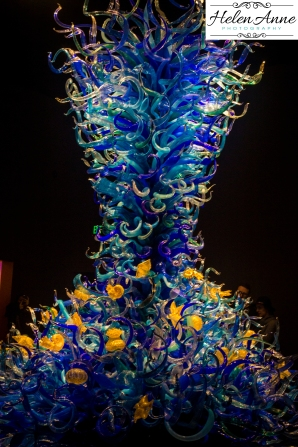 chihuly-seattle-2356-15