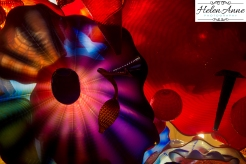 chihuly-seattle-2371-26