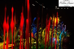 chihuly-seattle-2378-31