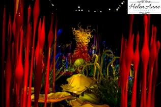 chihuly-seattle-2381-34