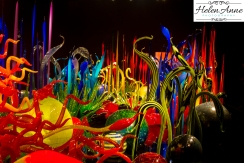 chihuly-seattle-2397-44