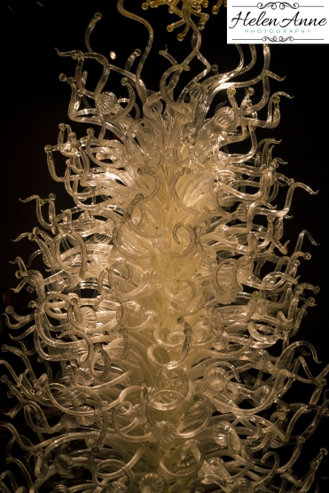 chihuly-seattle-2414-53