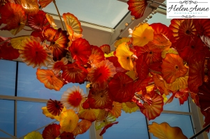 chihuly-seattle-2436-69