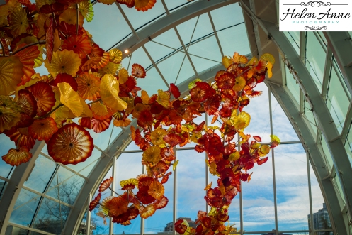 chihuly-seattle-2453-74