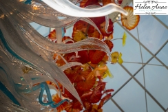 chihuly-seattle-2462-79