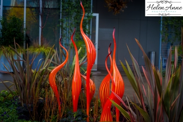 chihuly-seattle-2467-81