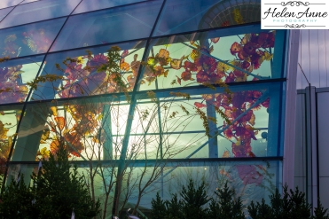 chihuly-seattle-2496-100