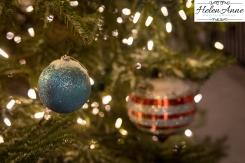 dtown-christmas-7002-8