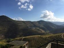 douro view 2