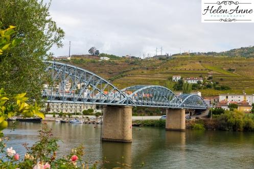 Quinta Carvalhas-0929