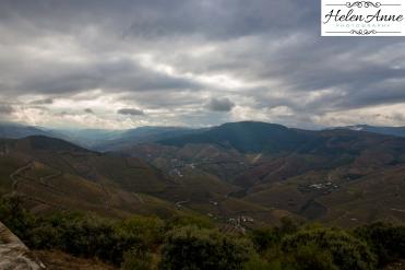 Quinta Carvalhas-0988