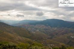 Quinta Carvalhas-0991