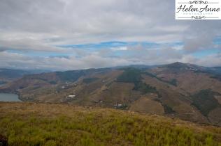 Quinta Carvalhas-0998