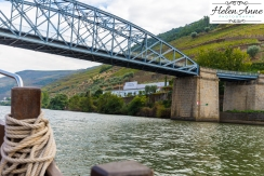 Douro River Cruise-1055
