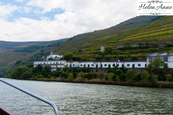 Douro River Cruise-1056
