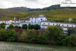 Douro River Cruise-1061