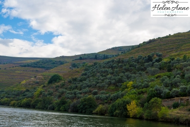 Douro River Cruise-1064