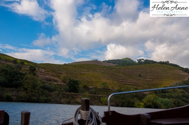 Douro River Cruise-1069