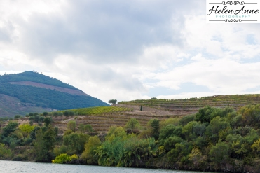Douro River Cruise-1070