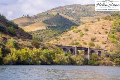 Douro River Cruise-1080