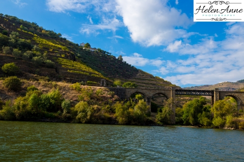 Douro River Cruise-1084
