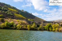 Douro River Cruise-1085