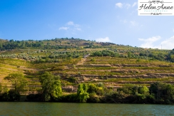 Douro River Cruise-1086