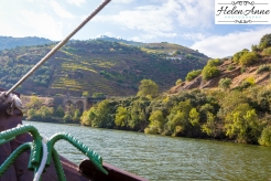 Douro River Cruise-1104