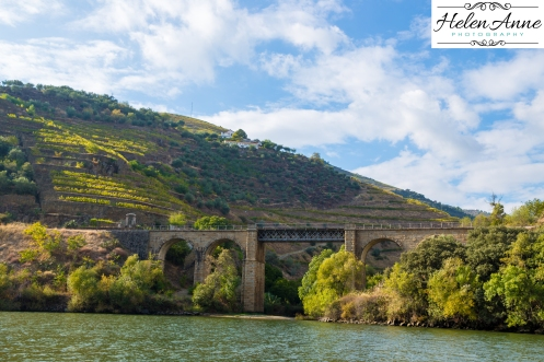 Douro River Cruise-1106