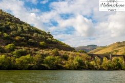 Douro River Cruise-1108