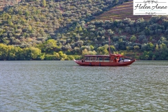 Douro River Cruise-1126