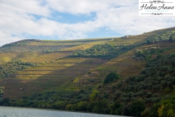 Douro River Cruise-1134