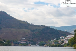 Douro River Cruise-1135