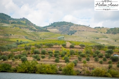 Douro River Cruise-1140