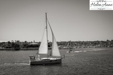 Lets go sailing!