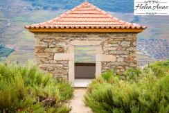 Quinta da Roeda-1153
