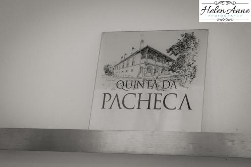 Pacheca-1354