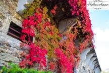 Quinta do Tedo-1276